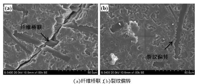 图4 掺入复合添加剂的和记娱乐平台基复合材料的显微组织