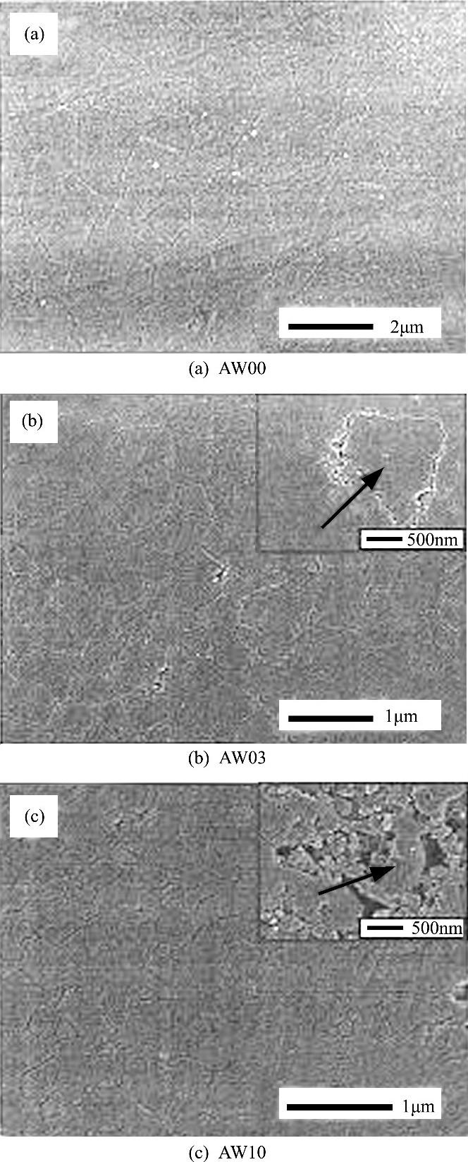 图2 抛光表面的SEM照片